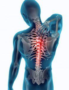 espalda dorsal